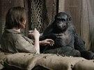 Z filmu �svit planety opic