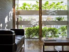 V Domě se zelenou fasádou o ploše 250 metrů čtverečních žijí tři generace,...