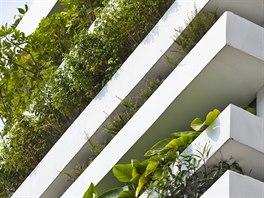 Dům se zelenou fasádou. Důmyslný závlahový systém přispívá k absolutnímu...