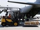 Nakládání ostatků obětí zřícení malajsijského letadla na Ukrajině do dopravního...