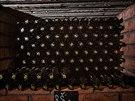 Vinotéka vinice sv. Kláry v pražské Troji