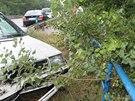 Nehoda BMW a �kody Felicie mezi B�eclav� a Hodon�nem (21. �ervence, 2014).