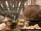Návštěvníkům se nabízí možnost detailní prohlídky předmětu (popis, historie,...