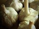 Česnek je trochu neprávem nedoceněnou kouzelnou rostlinou, protože odpuzuje...