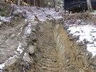 Obyvatelé Machovské Lhoty na Náchodsku si stěžovali na necitlivé zásahy v lese...
