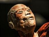 V minulosti se objevila i kritika výstavy mrtvých těl. Nyní se prý organizátoři...