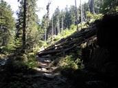 Na cca 18. kilometru. Vodopády Černé Desné a překážky na trati.