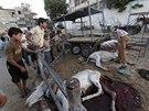 Při izraelských úderech na Gazu umírají také zvířata (29. července 2014)