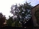 Fotografie pořízená smartphonem Nokia Lumia 930