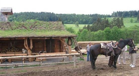 V Podolí můžete zjistit, zda je opravdu nejkrásnější pohled na svět z koňského...