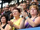 POTLESK VESTOJE. Fanoušci se loučili na tribuně stadionu Na Stínadlech s šéfem...