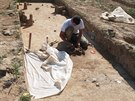Archeologové ve Vojenicích na Rychnovsku našli pohřebiště se stovkami hrobů.