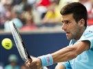 Novak Djokovič na turnaji v Torontu