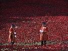 Keramické vlčí máky obklopily londýnský Tower na památku vojáků, kteří padli v...