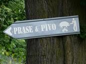 Prost� n�pis, �ipka a piktogram je pro ob�erstven� na fotbalov�m h�i�ti v...
