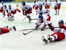 Českým hokejistům do 18 let se na turnaji v Břeclavi daří.