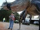 Ulovený aligátoří velikán je dlouhý 4,5 metru a váží téměř 460 kilogramů.