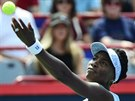 PODÁVÁM. Americká tenistka Venus Williams ve finále turnaje v Montrealu.
