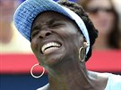 EMOCE. Americká tenistka Venus Williams prožívá finále turnaje v Montrealu...