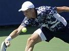 Tom� Berdych na turnaji v Cincinnati