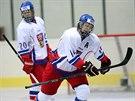 Čeští hokejisté do 18 let skončili na Memoriálu Ivana Hlinky druzí poté, co ve finále nestačili na Kanadu.