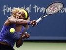 Serena Williamsová v semifinále turnaje v Cincinnati