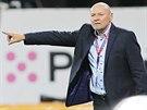 Miroslav Koubek, trenér Viktorie Plzeň