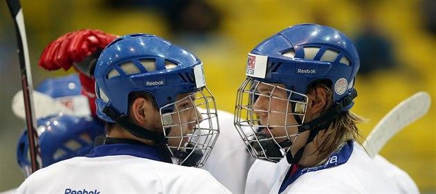 �eským hokejist�m do 18 let se na Memoriálu Ivana Hlinky v B�eclavi da�í....