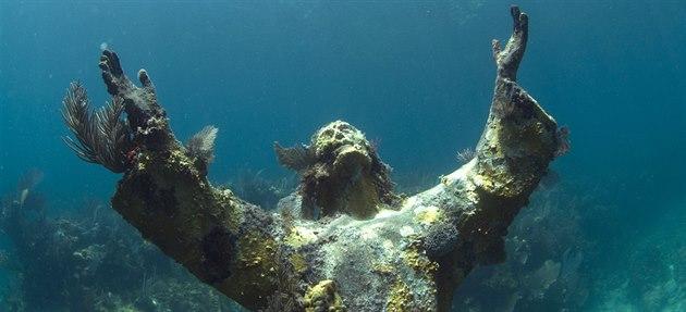 Korály porostlá socha Je�í�e Krista na Florid�