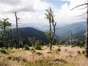 Výhled na údolí Loučné nad Desnou z úbočí Červené hory