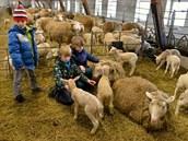 Kde se mají dobře zvířata, tam se většinou líbí i dětem.