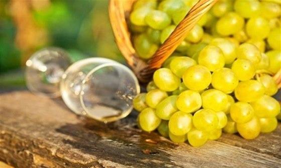 Ledová a slámová vína se začala u nás vyrábět až koncem 20. století.