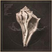 Robert Plant (obal alba)
