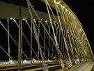 Mostní konstrukce je dlouhá 250 metrů a široká 36,2 metru. Rozpětí hlavního...