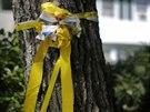 Stuha na stromě před domem rodičů zavražděného novináře Jamese Foleyho v...