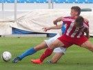 Michal Pavlata z Ústí nad Labem (v modrém) v obranném zákroku proti hráči Třince