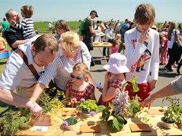 Dožínkové slavnosti pro rodiny s dětmi