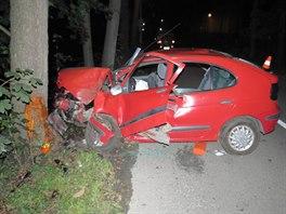 Zdemolovaný Renault Megane po nedělní nehodě opilého dvacetiletého řidiče v...