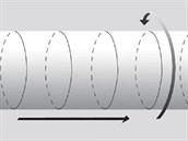 Povrch hadice je dvojrozměrný: jedna dlouhá podélná dimenze je znázorněna...