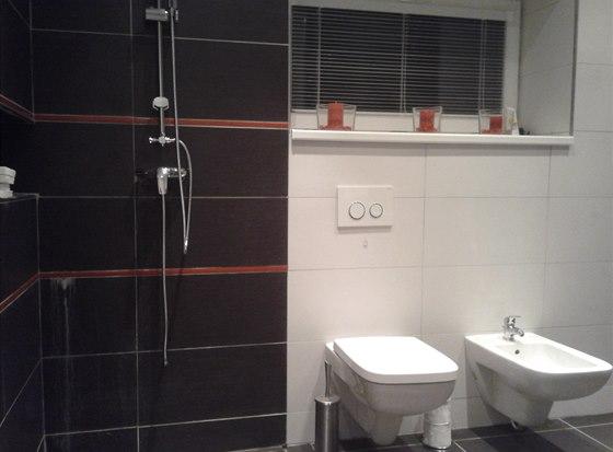 V koupelně nechybí WC ani bidet, zástěna u sprchového koutu však ano.
