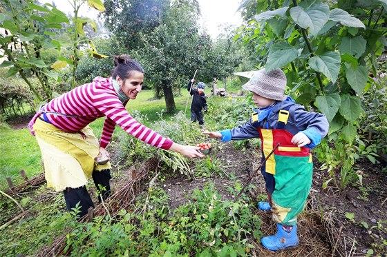 Děti se ve školce učí zahradničit. Pěstují rajčata, jahody nebo hrášek (3. 9.