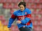 Tomáš Rosický na tréninku české reprezentace