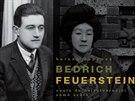 Kniha Bedřich Feuerstein - Cesta do nejvýtvarnější země od Heleny Čapkové