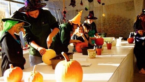 Dýňové slavnosti v Zahradním centru v Jindřichově Hradci