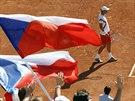 �esk�mu tenistovi Tom�i Berdychovi se v �vodn� dvouh�e semifin�le Davis Cupu...