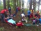 Závodníky orientačního běhu v Libíně na Jičínsku napadli sršni (13. září 2014).