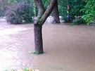 Rozvodněná Jevišovka zatopila i část obce Vevčice (14. září 2014).
