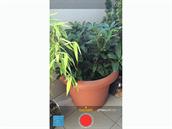 iOS 8 - nechybí možnost pořizovat časosběrná videa.