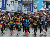 Ústeckého p�lmaratonu se zú�astnilo 4 037 lidí.