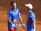 PROHRÁLI. Čeští tenisté Radek Štěpánek (vlevo) a Tomáš Berdych prohráli ve Francii čtyřhru a skončili v daviscupovém semifinle.